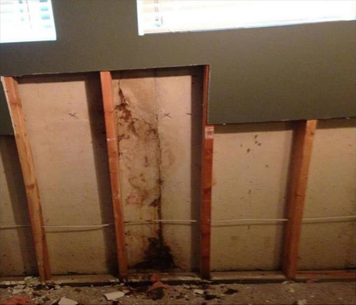 Carmichael Mold Problem in a Wall Before
