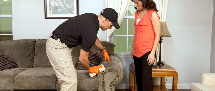 Carmichael, CA carpet upholstery cleaning