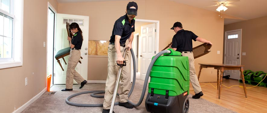 Carmichael, CA cleaning services